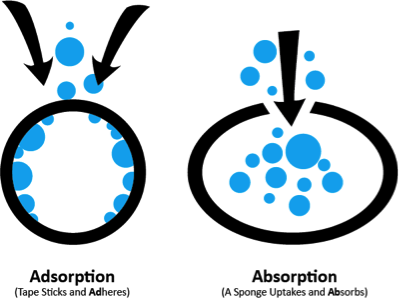 adsorption vs. absorption